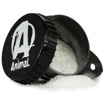 Funnel Animal