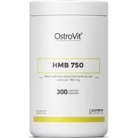 HMB 750 (300kaps/300serv) OstroVit EU