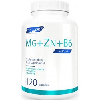 Magneesium tsitraat / Tsink sulfate b6 (120kaps/40serv) SFD EU