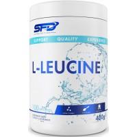 L- LEUCINE (400g/100serv) SFD EU